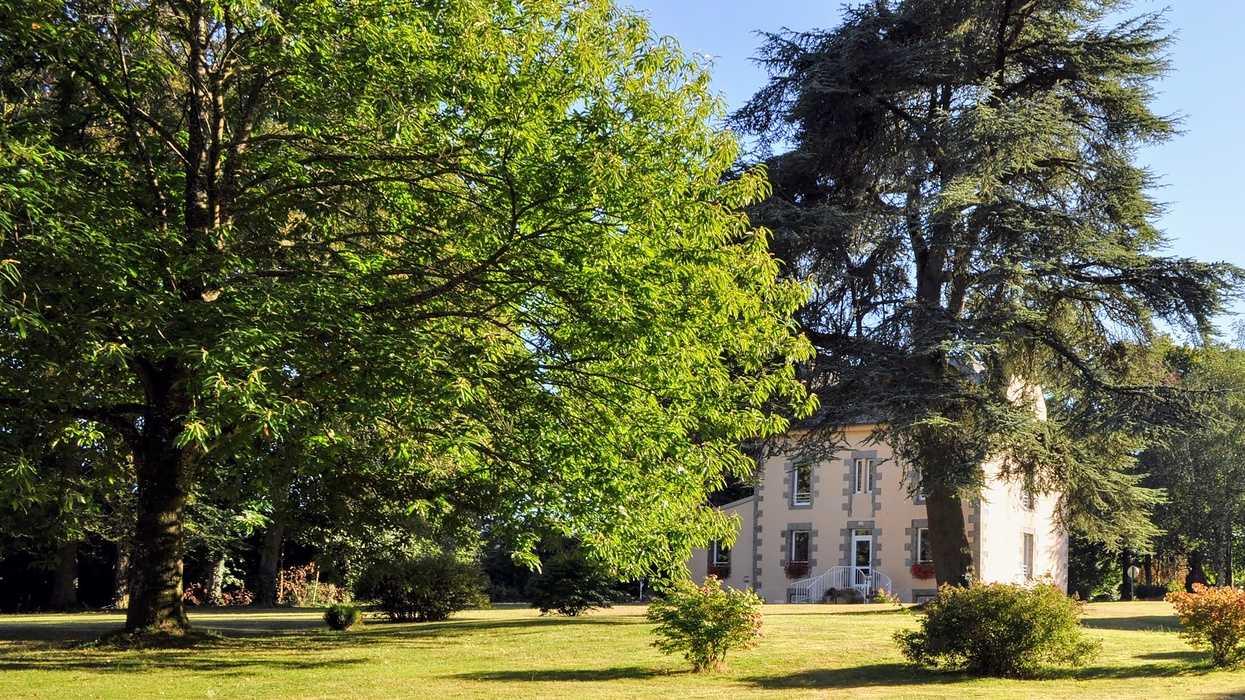 Le Petit-castel - Saint-Martin-des-Prés dsc0527